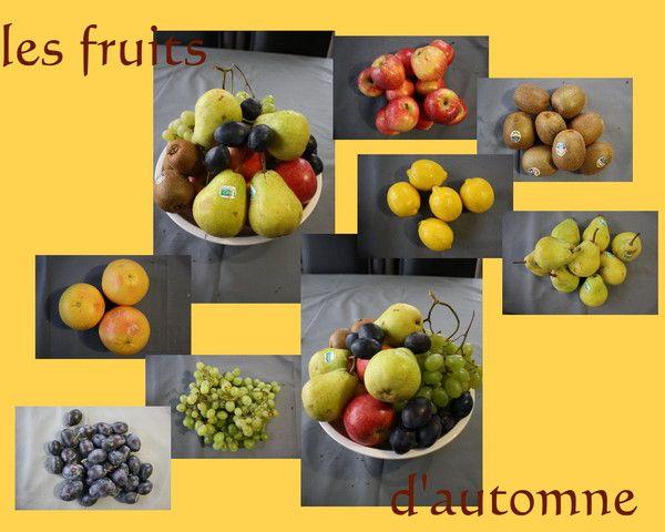 Les frutis d 39 automne centerblog - Fruits automne maternelle ...